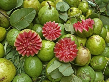 129940624-red-guavas-for-sale-at-street-market-indore-gettyimages_oggetto_editoriale_720x600